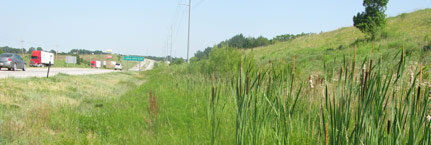 Wetland Services - Road Improvement Projects